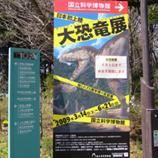 01恐竜展看板 45.jpg