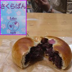 11桜あんぱん220円 70.jpg