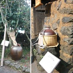 12済州民俗村 カメ*70.jpg