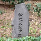 20 P1060125松之大廊下跡*45 8.9x.jpg
