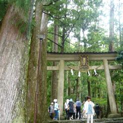24熊野那智大社別宮飛瀧(ひろ)神社 70.jpg