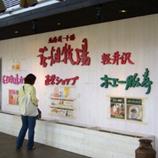32花畑牧場*45.jpg