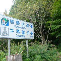 40熊野古道 70.jpg