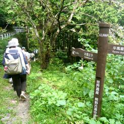 43熊野古道 70.jpg