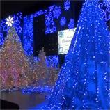 47新宿サザンテラスイルミネーション2010 45.jpg