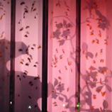 ビョウブリウム(屏風水槽) ピンク. 45jpg.jpg