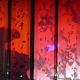 ビョウブリウム(屏風水槽) 赤 45.jpg