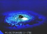 中村征夫写真展チケット裏1 ジープ島 45 8.9x.jpg