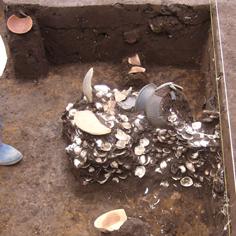 竪穴住居とゴミ置場・貝*70.jpg