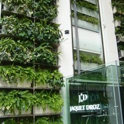 P1070548エコ 壁のグリーン 70 8.9x.jpg