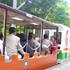 01トロッコ電車 20.jpg