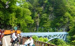 03後曳橋 5.41x 70.jpg