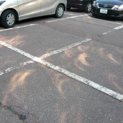 12日食 木漏れ日7:29 70.jpg
