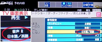 36信号設定 ダーティファイター 100.jpg