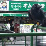 オムニ食堂本店*45.jpg