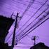 動画切出用-0000005紫★ 20 8.9x.jpg