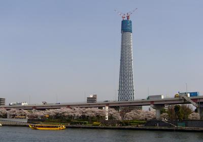 隅田公園2 80.jpg