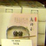 P1070509鳥羽玉(うばたま) 45 8.9x.jpg